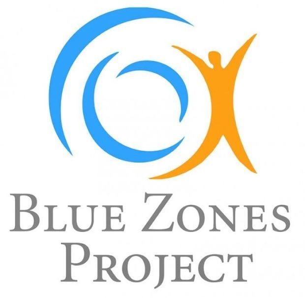 Blue Zone logo